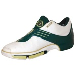 Circa 2003 Lebron James St. Vincent- St. Mary High School Game-Used Sneaker